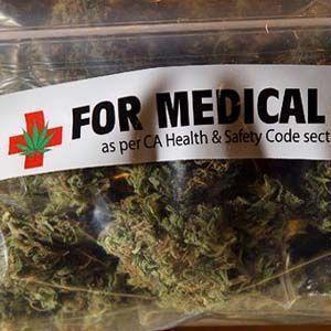 Estudios demuestran que el cannabis es un asesino natural del cáncer