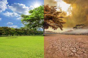 Que cambio climático: Fraude y engaño de propagandistas 0