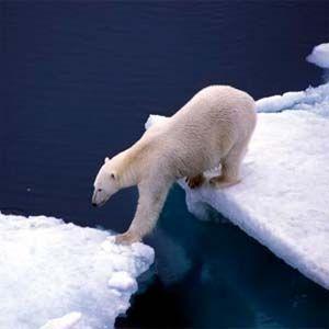 Fraude y engaño de los propagandistas del cambio climático