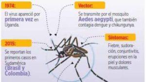 Virus Zika: Rockefelleres dueño de la patente del Zika 0