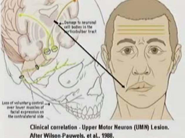 Estetica facial, cursos a distancia para auxiliares de enfermeria, curso mantenimiento industrial.