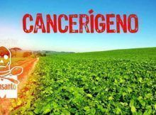 donde comprar glifosato herbicida, herbicida roundup ultra plus.
