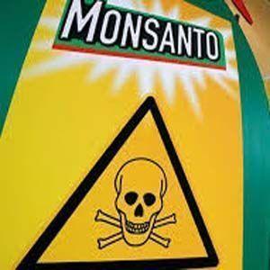 Los PCB de Monsanto, son mortales para los seres humanos
