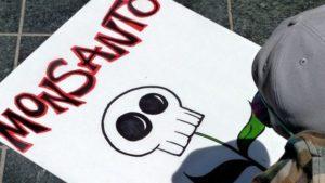 Sustancias tóxicas: los PCB son mortales para los humanos 0