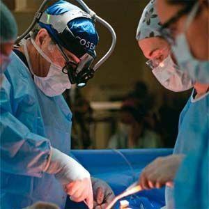 Donantes de Órganos: se retuercen de dolor cuando le extraen los órganos