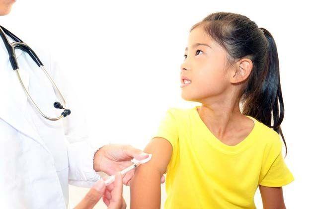 costo de vacunas para perros, vacunas in english.