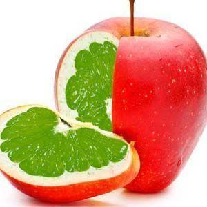 OMG: Los organismos modificados genéticamente provocan cáncer
