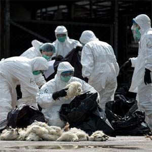 Dr. Tedros Adhanom (OMS): Pandemia mundial dejará miles de millones de muertos