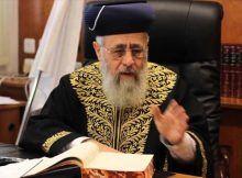 rabino bergman planta, rabino yosi.
