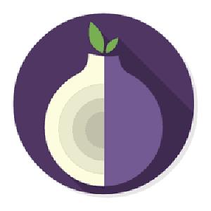 El Proyecto Tor es unaextensión privatizada del gobierno de EE.UU