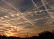 chemtrails are turning the frogs gay, kelli ward chemtrails.