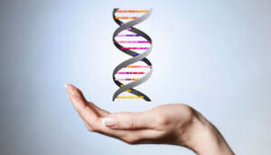 Clonar humanos: sigue fascinando al mundo de la ciencia 0