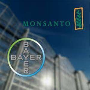 Monsanto es un asesino en serie, en adelante se conocerá como Bayer