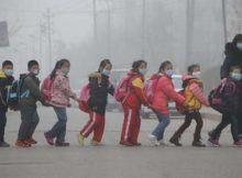 Impacto ambiental: la élite implementa muchos métodos de despoblación