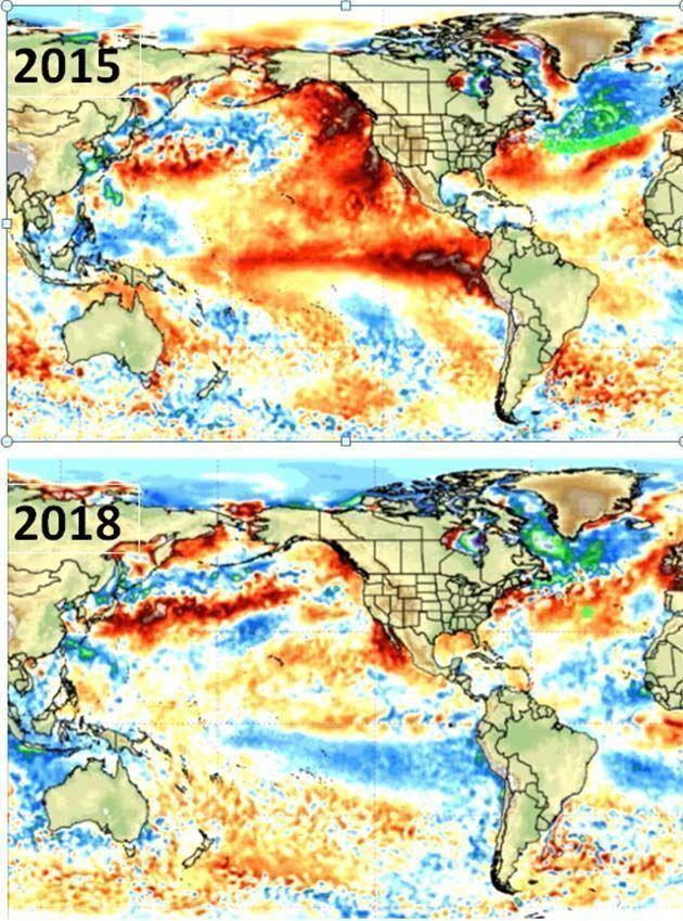 Glaciares: la Tierra se ha enfriado en los últimos 3 años.