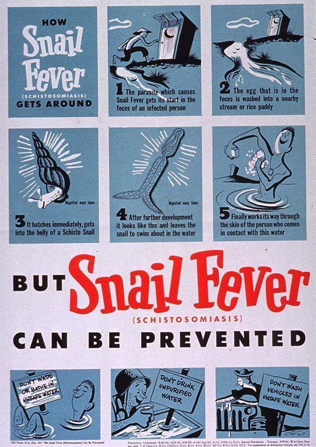 Medicina para parasitos, vers intestinaux homme.