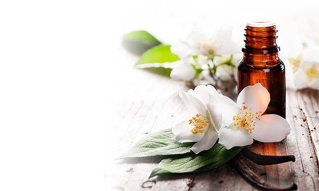 medico homeopatas.