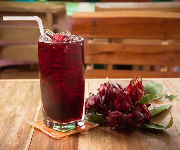 Hibiscus te: extracto de Té de Hibisco contra la gripe aviar
