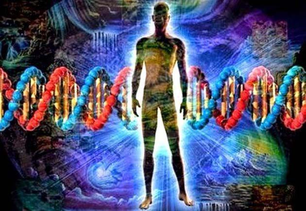 Memoria celular: los fundamentos de la activación epigenética