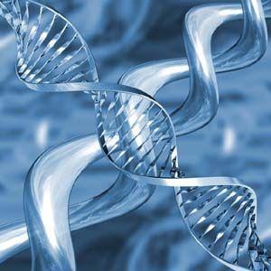 Estudio de ADN: El ADN podría comunicarse con otro ADN