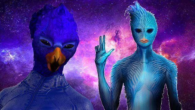 aviares azules.