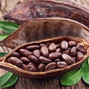 Chocolate: los granos de cacao tienen muchos efectos terapéuticos