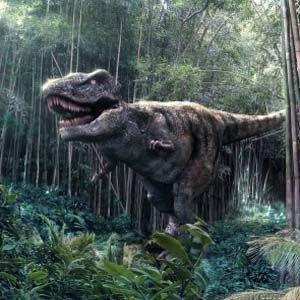 Los expertos dicen que el dinosaurio T-Rex tenía un hocico muy sensible