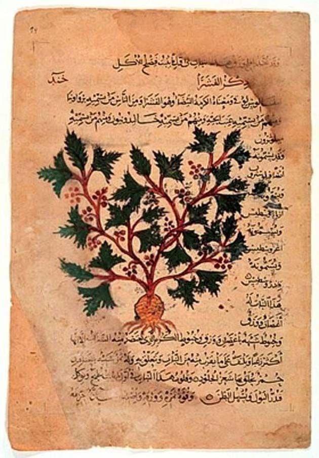 Probaron una receta de un texto de medicinaen Inglés antiguo