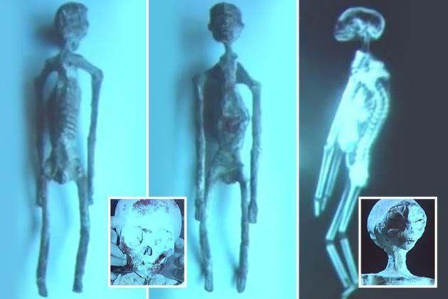 """Ultimas noticias de Peru: descubrieron seis cuerpos """"extraños"""" en Nazca"""