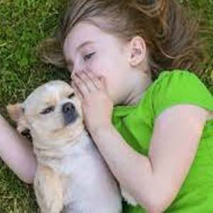 Curso comunicacion: se especializan en telepatía con mascotas