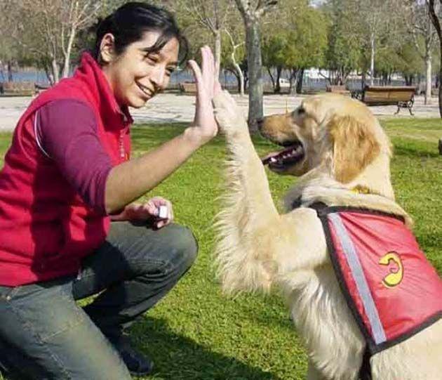 Los comunicadores animales se especializan en telepatía con mascotas