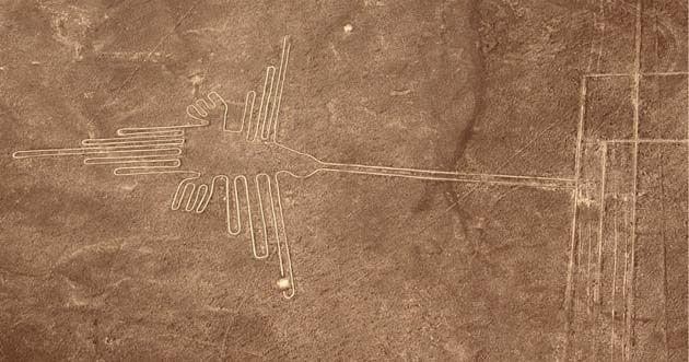 Un misterio de las líneas de Nazca del Perú ha sido descifrado por la ornitología 1