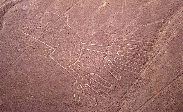 Nazca Peru: de los geoglifos, hay 16 que representan pájaros hay 16 que representan pájaros