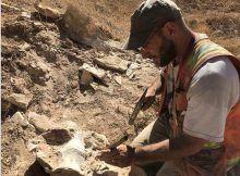 Ridgecrest: descubrieron fósiles luego de los sismos M6.4 y M7.1