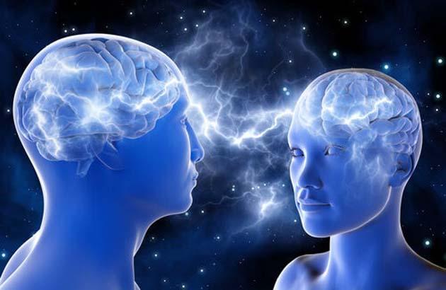 Brain: comunicación cerebro a cerebro crea 1 súper cerebro en Internet