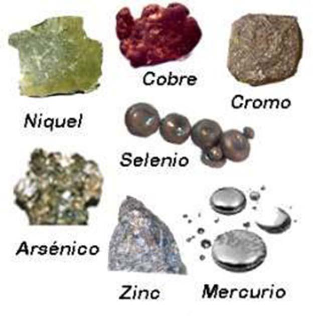 Metales pesados: entre las peores toxinas tenemos 1 los metales pesados