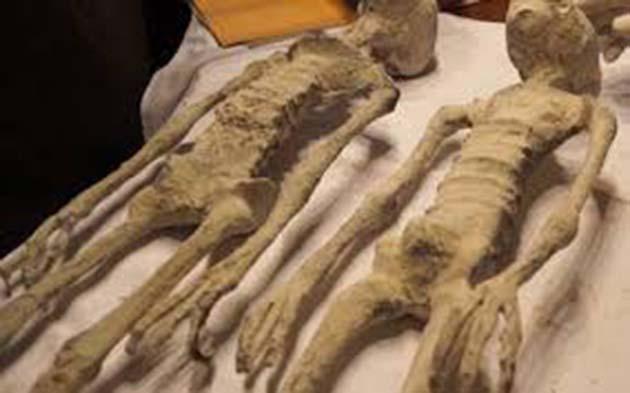 Resultado de adn negativo: momia coincidió genéticamente 25%