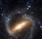 Física: la misteriosa partícula subatómica X17