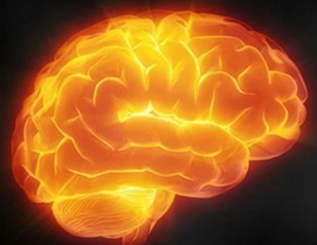 Curcumina: 300 estudios: el fluoruro es literalmente una neurotoxina