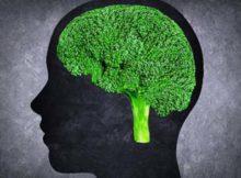 Memoria: 1 luteína para una mejor salud cerebral
