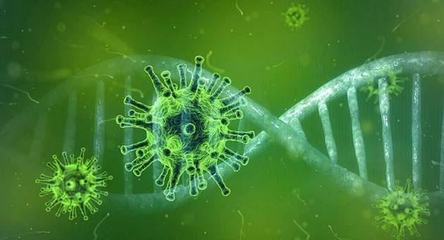 Mutaciones 0 estudio identifica 40 mutaciones de coronavirus