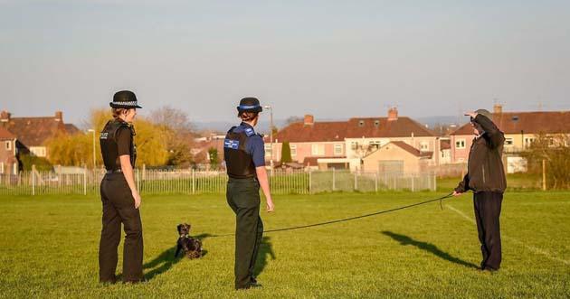 Espiar 0 jefes de policia alentan a espiar a los vecinos