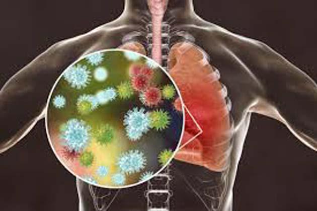 Linfocitos T: el virus se reactiva en ciertos pacientes 0