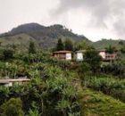 Zonas rurales: las búsquedas son 125 por ciento más altas