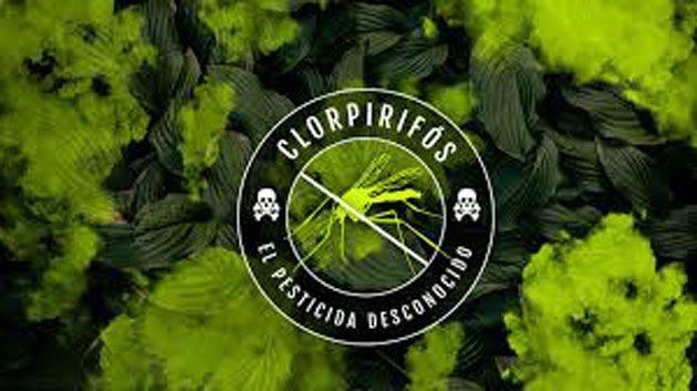 Clorpirifos: es una neurotoxina que afecta el cerebro 0