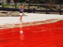Un río de Israel se vuelve color rojo sangre. ¿Llegamos al final de los tiempos? 1
