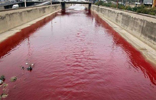 Revelaciones: informes de ríos y lluvias rojas en el mundo 0