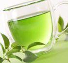 Riñones: Hierbas medicinales para el tratamiento 0