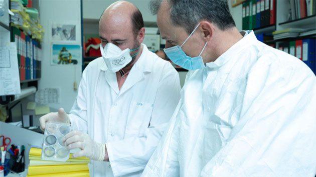 Coronavirus de Wuhan: es un arma biológica artificial 0