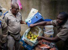 Matar de hambre: Hambruna de proporciones bíblicas-COVID-19